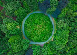 Provinciebestuur Utrecht kiest nadrukkelijk voor groen